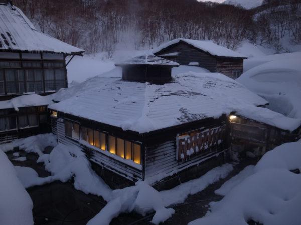 ski snowboard freeride freerando rando hokkaido japon 235 scaled
