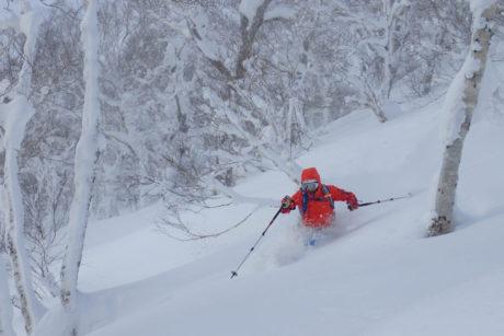 ski snowboard freeride freerando rando hokkaido japon 273
